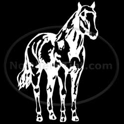 Horse rodeo vinyl wall art car truck decal sticker 140