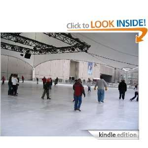 Ice Skating Rink Facility Start Up Business Plan NEW! [Kindle Edition
