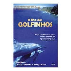 Ilha dos Golfinhos   Spinner Dolphins   Ilha dos Golfinhos