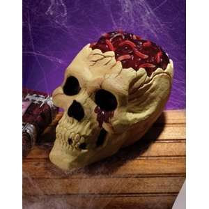 Skull With Bloody Brain Prop: Home & Kitchen
