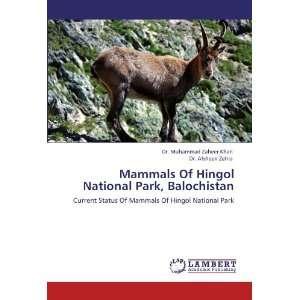 (9783846505908): Dr. Muhammad Zaheer Khan, Dr. Afsheen Zehra: Books