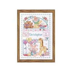 Birth Record for Baby Counted Cross Stitch Kit: Office Products