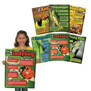 Bugs Learning Charts   Teacher Resources & Posters Office