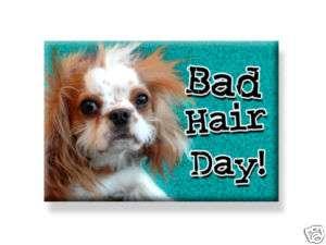 Cavalier King Charles Spaniel Dog Magnet Bad Hair Day