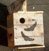 TWOSMALL SCREECH OWL house, Nesting box. Ohio quality