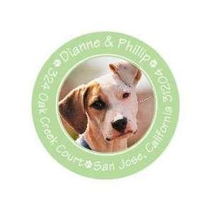 Cute Paw Prints Green Pet Photo Sticker Round Sticker