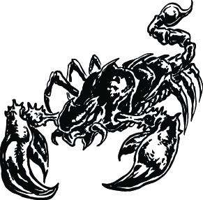 LARGE SCORPION #10 DECAL GRAPHIC CAR TRUCK SEMI HOOD