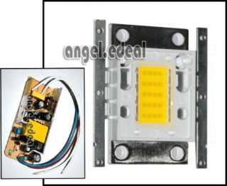 20W Warm White High Power 1100L LED Light + AC Driver