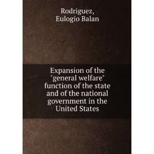 government in the United States Eulogio Balan Rodriguez Books