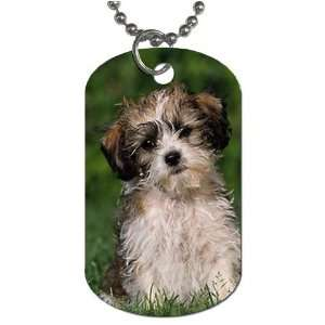 Cute puppy Dog Tag with 30 chain necklace Great Gift Idea