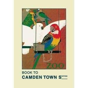 Vintage Art London Zoo Exotic Birds   01470 9