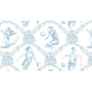 Girls Sports Toile Wallpaper in Blue: Home Improvement