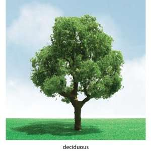 Products 92301 Pro Elite Tree Deciduous 3 3.5 (2): Toys & Games