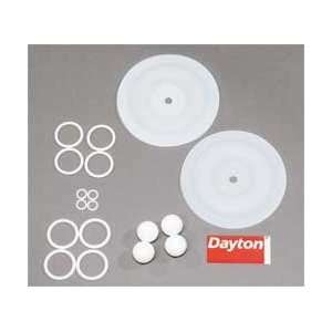 Dayton 6PY72 Pump Repair Kit, Fluid  Industrial