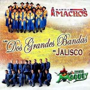 Bandas de Jali Banda Machos, Banda Maquey, Banda Maguey Music