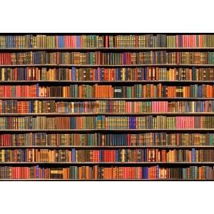 Platin Art Wall Mural Deco Wall, Library, 8 Feet 4 Inch by 12 Feet