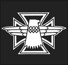 Nikki Sixx Motley Crue T Shirt   Gibson Blackbird Bass   Thunderbird